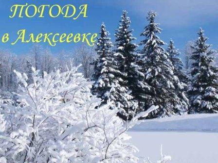 Погода в Алексеевке